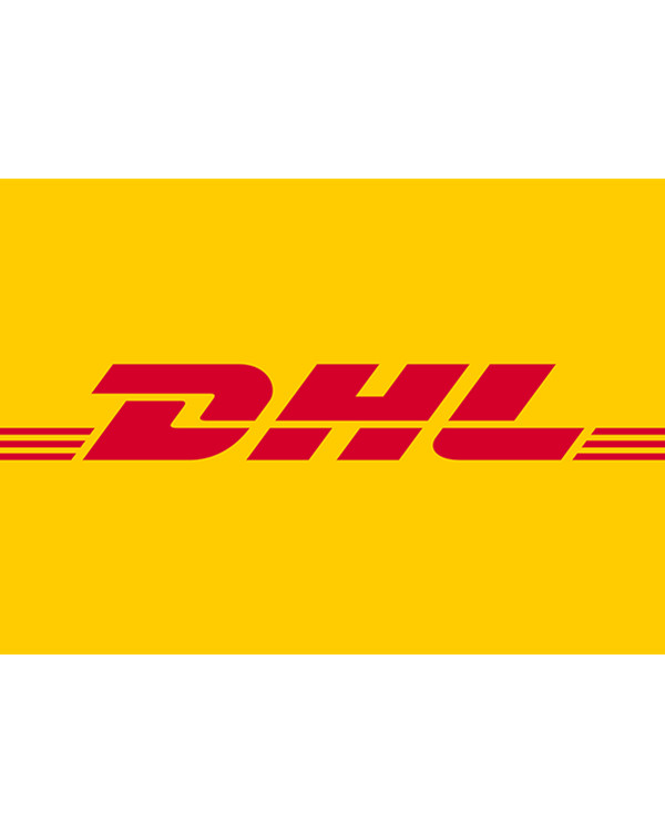 Additional Payment For Expedited Shipping Fee - DHL fast shipping